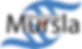 Official Logo New Blue_v4.png