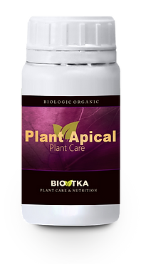 BioTKA Plant Apical.png