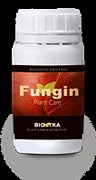 BioTKA Fungin.png