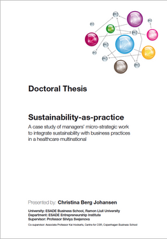 Sustainability-as-practice dissertation