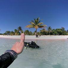 diving 4.jpg