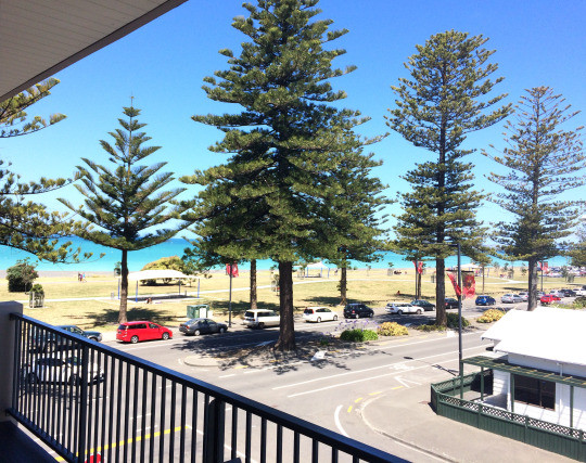 Napier, NZ - stunning view from our room.