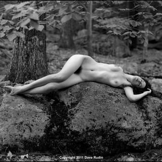 Untitled Nude, 2011