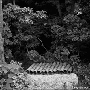 Bamboo Pipes, Kamakura, 2004