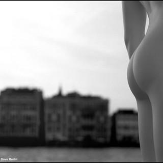 Backside, Venice, 2009