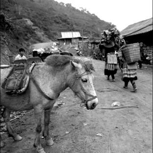 Market, Northern Vietnam, 2006