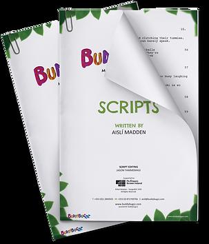 SCRIPTS-MOCKUP3.png