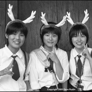 Girls With Antlers, Nara, 2005