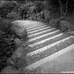Steps, Tofuku-ji Temple, Kyoto, 2004