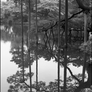 Reflection, Kenroku-en Garden, Kanazawa, 2010