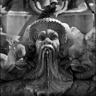 Fountain, Piazza della Rotonda, Rome, 2017