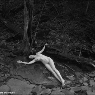 Untitled Nude, 2016