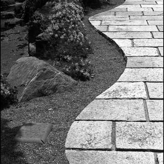 Curves, Matsumoto, 2004