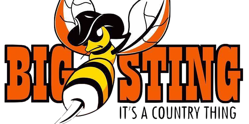 6th Annual The Big Sting - It's a Country Thing