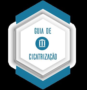 GuiaCicatrizacao3.png