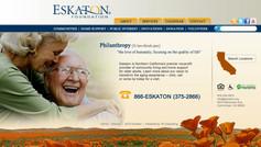 Eskaton Graphics Interface Graphic Designs