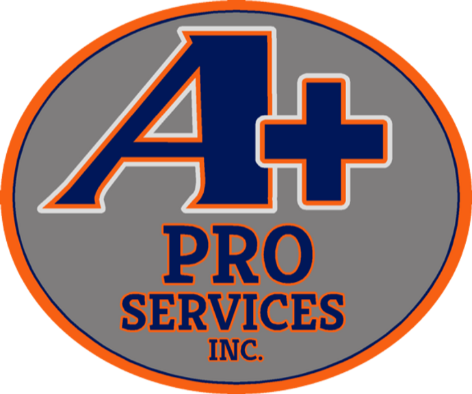 A+ProServicesInc.png