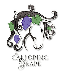 Gently Used Horse Saddles | Warrenton, VA | The Galloping Grape