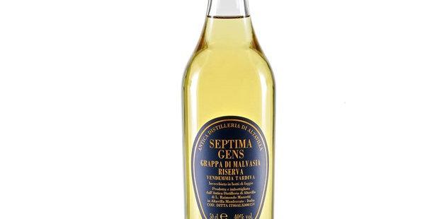 Septima Gens