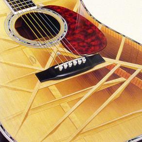 倍音入りギターこそ究極だ! その1 D-45が多くの人を魅了する