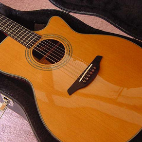 ギターの素材を求めて  秋田杉のふるさと訪問