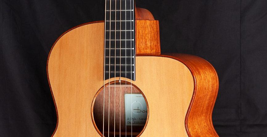 Baden Guitars ベーデンギターサイトのタイトル画像