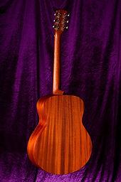 Ayers TG09-SM OTS Mini Guitar JP Custom
