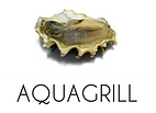 Oyster Aquagrill NYC Menus Best Seafood Restauant and Top Fish serving Lunch, Brunch and Dinner, busy bar and lounge, outdoor dining downtown in SoHo