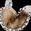 Thumbnail: SASSY FOX - PLUG