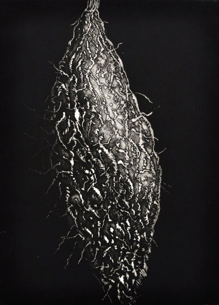 """From the series """"Roots"""", 2013"""