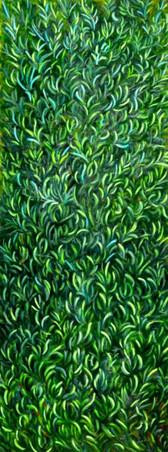 "From the series ""Flora Hierosolymitana"", 2012"