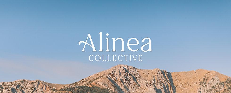 Alinea Brand Design-17.jpg