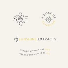 Sunshine Brand Graphics-02.jpg