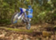 wr450f-2019-dirt-bike.jpg