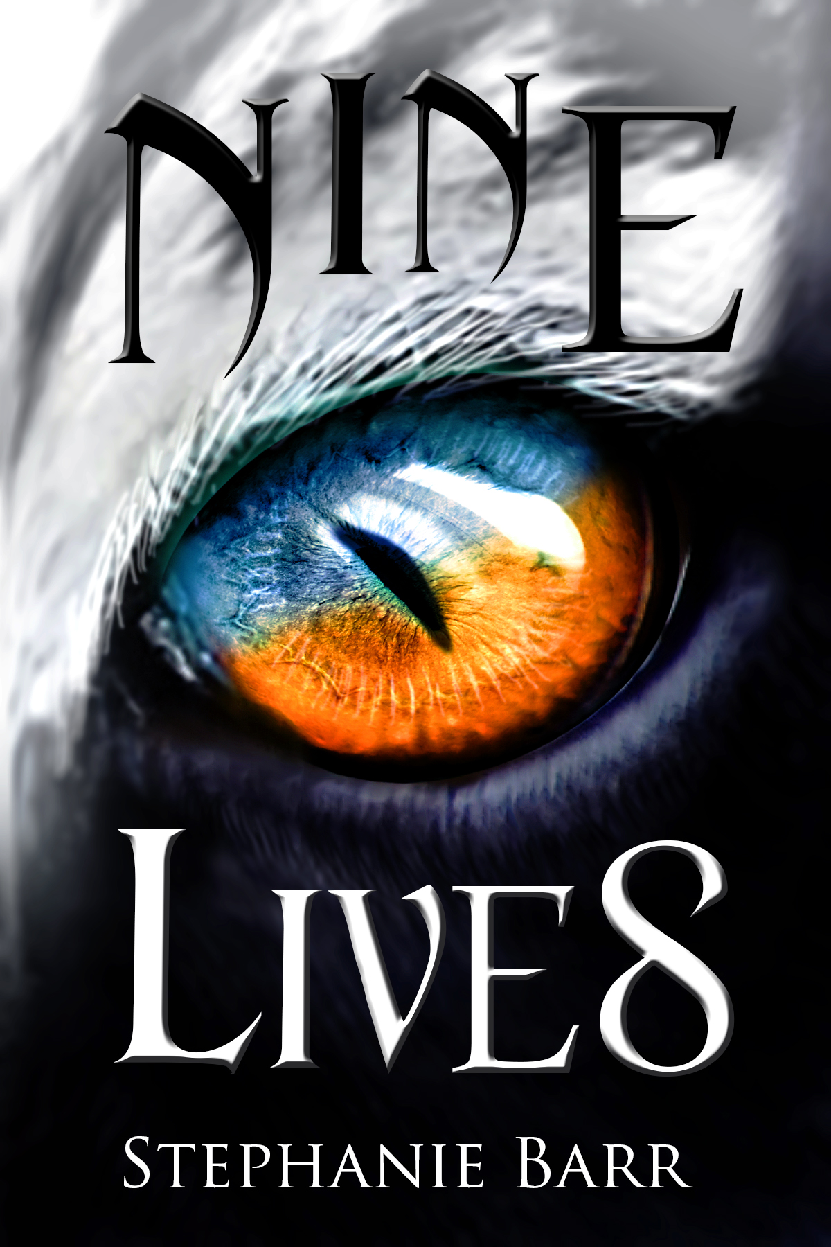 Nine Lives by Stephanie Barr