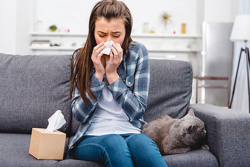 Allergens-In-the-Home-Everything-You-Nee