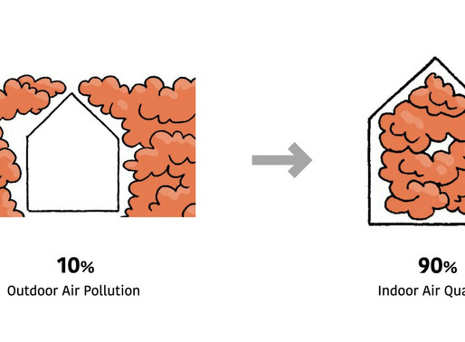 How to Transform a Polluted Indoor Environment