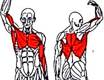 The Fitness Digest-kenya-pull ups