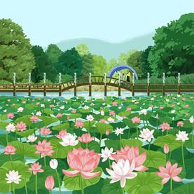 Nami Island Korea 04