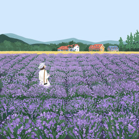 In the middle of the lavender field