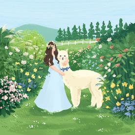 May bride and an alpaca