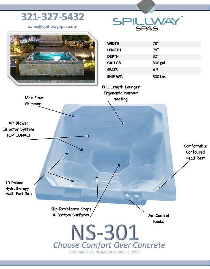 NS-301