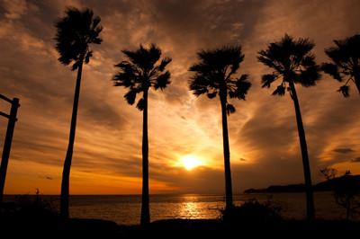 浜島の夕景