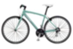 img-cycle02[1].jpg