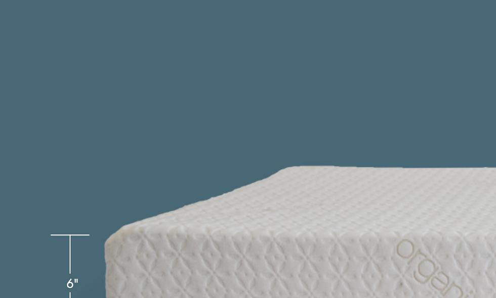 "6"" Memory Foam Mattress Organic Cover"