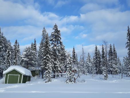 Zo Koud Is Het In Lapland