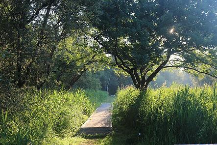 Weerribben wandelen en kano varen FB.jpg