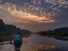 5 redenen om te gaan wandelen en kano varen in de Weerribben-Wieden