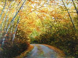 Stoney Lake Road