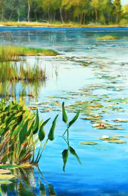 Barry's Pond
